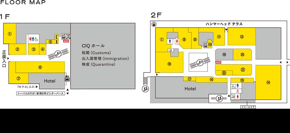 ヘッド 横浜 ハンマー COLONIAL BEACH