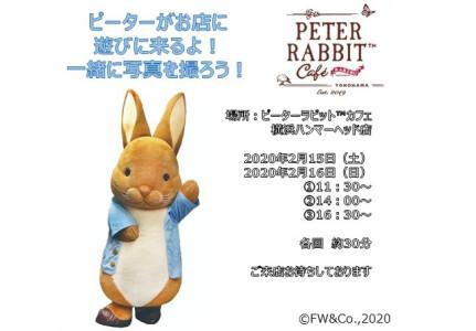 【2/15・16限定】ピーターがカフェに遊びに来ますよ♪
