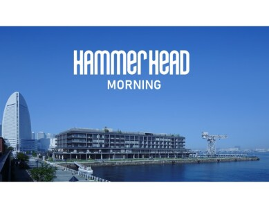 HAMMERHEAD MORNING