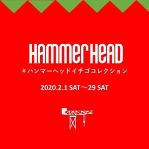 【2月】ハンマーヘッドイチゴコレクション2020 開催!