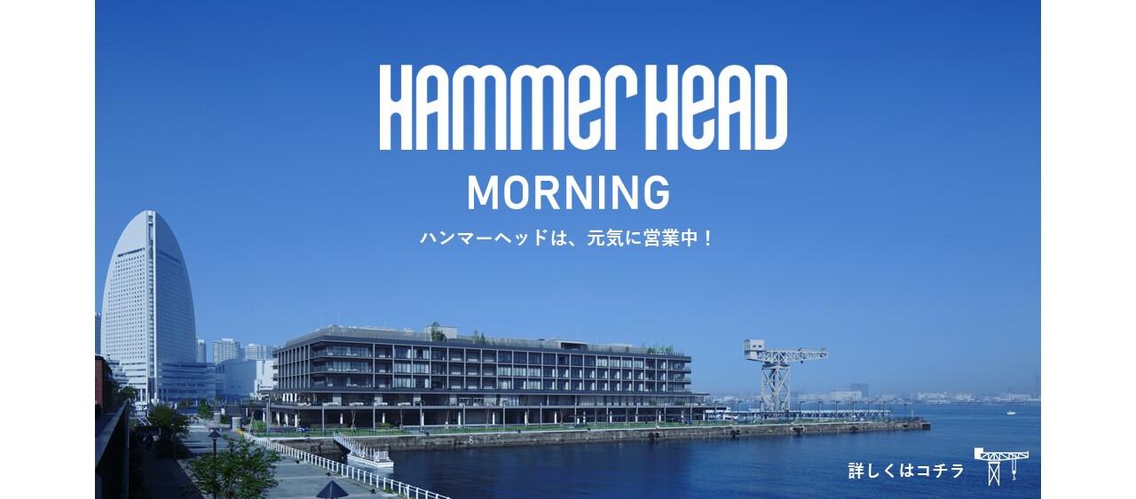 ハンマーヘッドモーニング